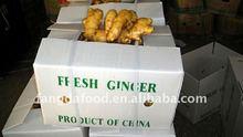 frozen ginger garlic price