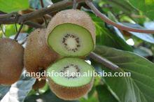Fresh kiwi fruit 2012