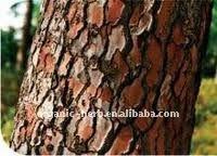 Pine Bark Extract 95% Proanthocyanidins OPC
