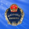 Custom Law Enforcement Badges