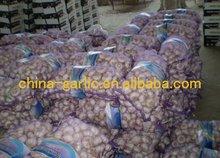 ginger and garlic paste pack -- Jinxiang crop
