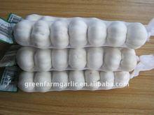 Jinxiang White Garlic,Small Packing Garlic Price