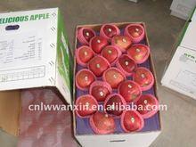red delicious apple 2011 crop