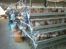 egg chicken layer cage,layer chicken cage