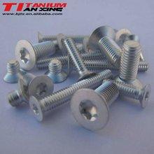 Flat Head Torx Drive Titanium Screws