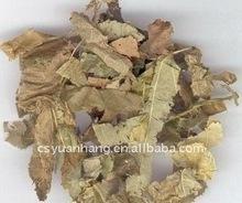 Honey Goat Weed Extract powder