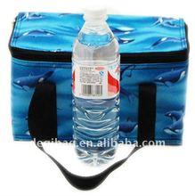 Family size picnic cooler bag