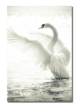Vogue home decor white swan painting