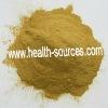 Traditional China medicine Coleus Forskohlii extract powder