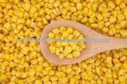 yellow maize/corn supplier