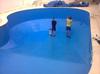 Polyurea Coating for swimming pool
