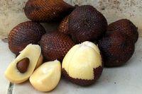 Salak / Salaca / Snake Fruit