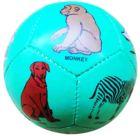 Mini Elementary Education Soccer ball- Shapes