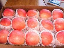 fuji - Gala red - Qinguan sweet fresh apple
