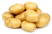 fresh potato in agriculture