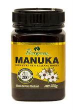 Evergreen Manuka Honey 0.5kg