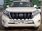 Brand New Toyota Land Cruiser Prado 4x4 TX-L 7 2.7 A/T China