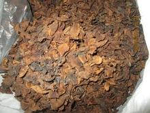 dried plumeria