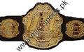 تصميم مخصص بطولة الأحزمة 251 لمجلس العمل المتحد محاربة/ ملاكمة مكافحة/ الوزنرفعلياقة المنافسة