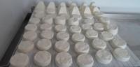 Organic goat cheese / sheep cheese