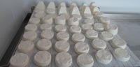 GOAT and SHEEP CHEESE - WHITE GOAT and SHEEP CHEESE