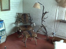 Deer antlers furniture
