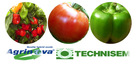 Vegetable seeds for professional growers