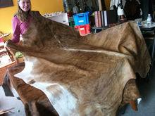 Cow Hide , Buffalo hide, donkey hide, wet blue