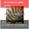 Wholesale food-grade sea food freeze dried shrimp