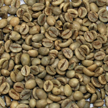 Vietnam Robusta Green Coffee Beans wholesale
