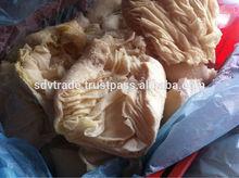 Frozen beef omasum uncooked