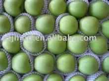 bulk fresh green apples