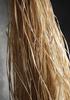 Raffia fiber