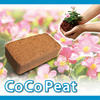 Eco-friendly Coco Peat is without chemical materials for agriculture
