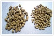 Fodder yeast( (pellets & powder)-animal feed & safflower, flax seed, white mustard, vetch, millet, buckwheat, chickpea, lentils