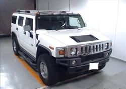 Hummer IB21113