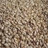 black sesame seeds-natural