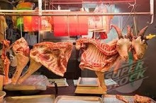 Fresh Chilled Lamb Carcass