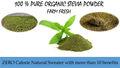 100% farm fresh orgânica pó de estévia
