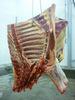 Prime Grade-Quarter Cuts-Frozen Beef -Halal Beef