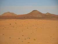 Sell lands in Algeria