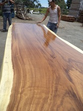 Long WOOD SLAB FOR DINING TABLE OF PAROTA WOOD - BEST PRICE YOU WILL FIND!