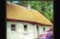 palha de cottage pacotes de casamento na índia