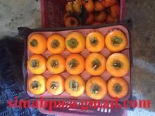frutta cachi