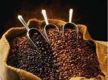 Arabica Coffee Beans, Robusta Coffee