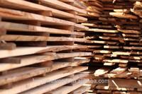 Eucalyptus Sawn Wood