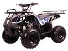 Coolster 110cc Trailrunner Kids ATV