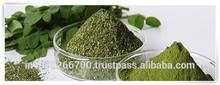 Moringa Seeds for Sale