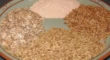 Barley, wheat and hop