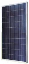 Astronergy CHSM6610PR-250 250W Poly SLV WHT Solar Panel